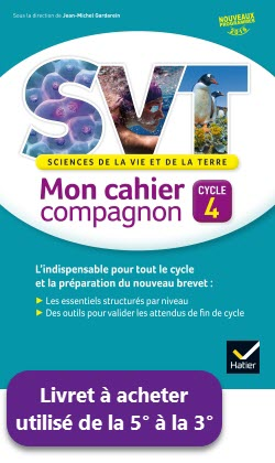 Éditions Hatier - PRIX : 6,50 € - Type : Cahier d'exercices  -  96 pages Code : 4371801 - ISBN : 978-2-401-02153-2