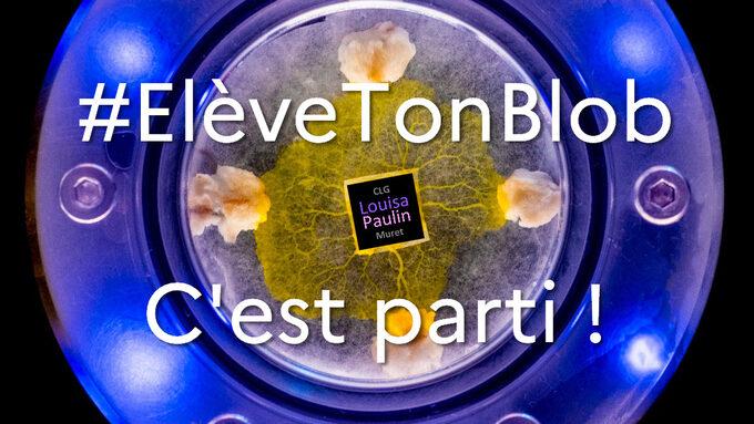 blobLPcestparti.jpg